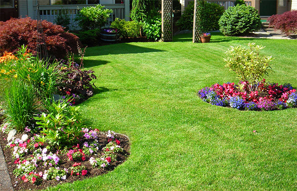 Interesting aiuole giardino with aiuole in giardino for Aiuole profumate