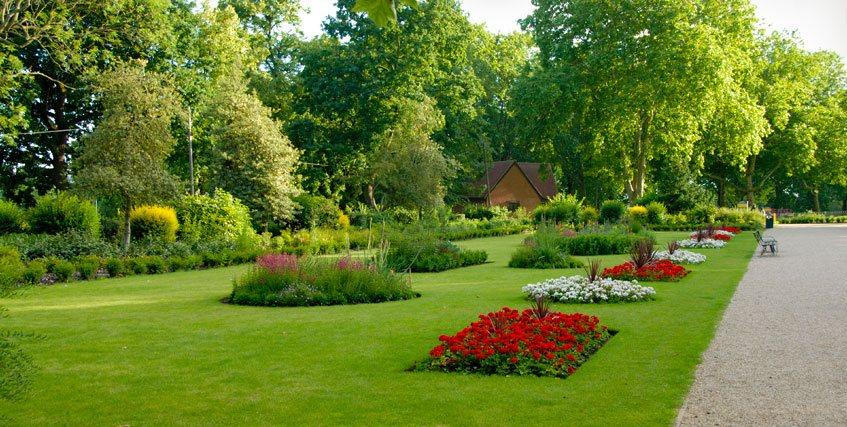 Manutenzione giardini roma for Manutenzione giardini